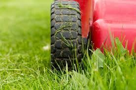 Picture of lawn mower cutting grass